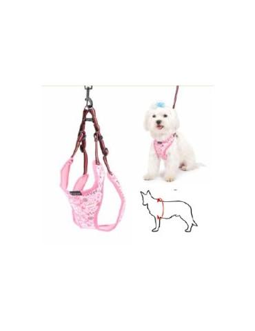 Pink Dog Harness + Leash