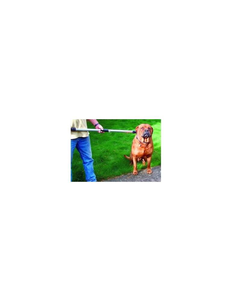 Αρπαγέας λαιμού 100m για σκύλους