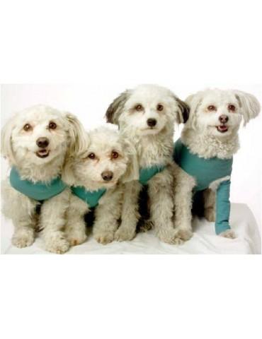 Ρουχαλάκια χειρουργείου Vetmedcare για θηλυκούς σκύλους και γάτες