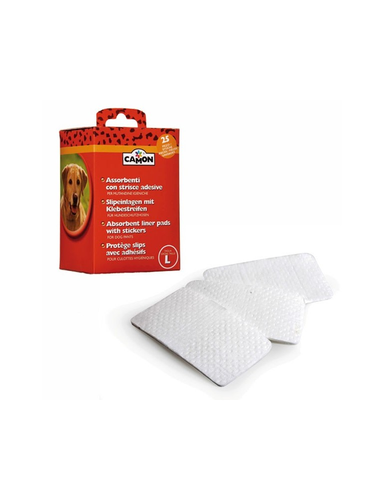 Absorbent liner pads with stickers