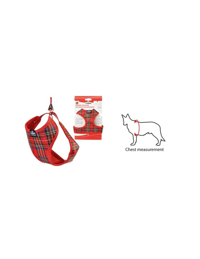 Red Harness with Leash