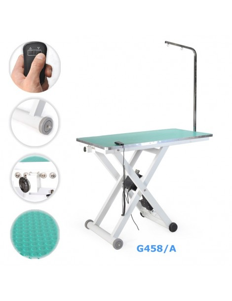 Professional Electric adjustable grooming table