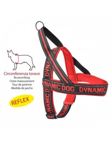 "Red Neoprene Harness ""Dynamic"""