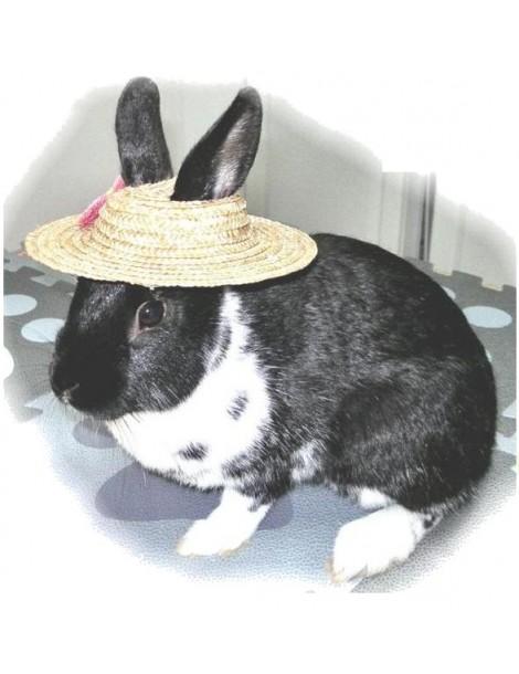 """Καπέλο για Κουνέλια """"I'll Eat My Hat"""""""