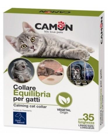 Κολάρο γάτας Equilibria