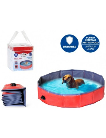 Swimming pool for dogs