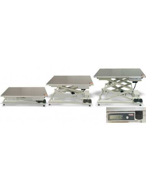 Stainless Electric Examination Table/Scale