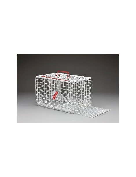 Cage with Restraining Panel