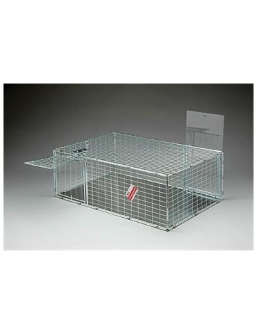 Multi Catch Cat Trap Solid Floor