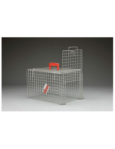 Trap and Transfer Basket