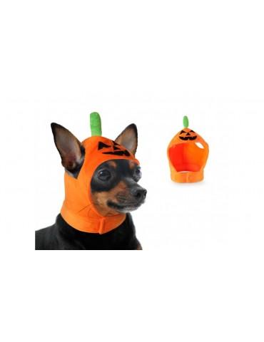 Φορμάκι Για Το Κεφάλι Σκύλου-Κολοκύθα