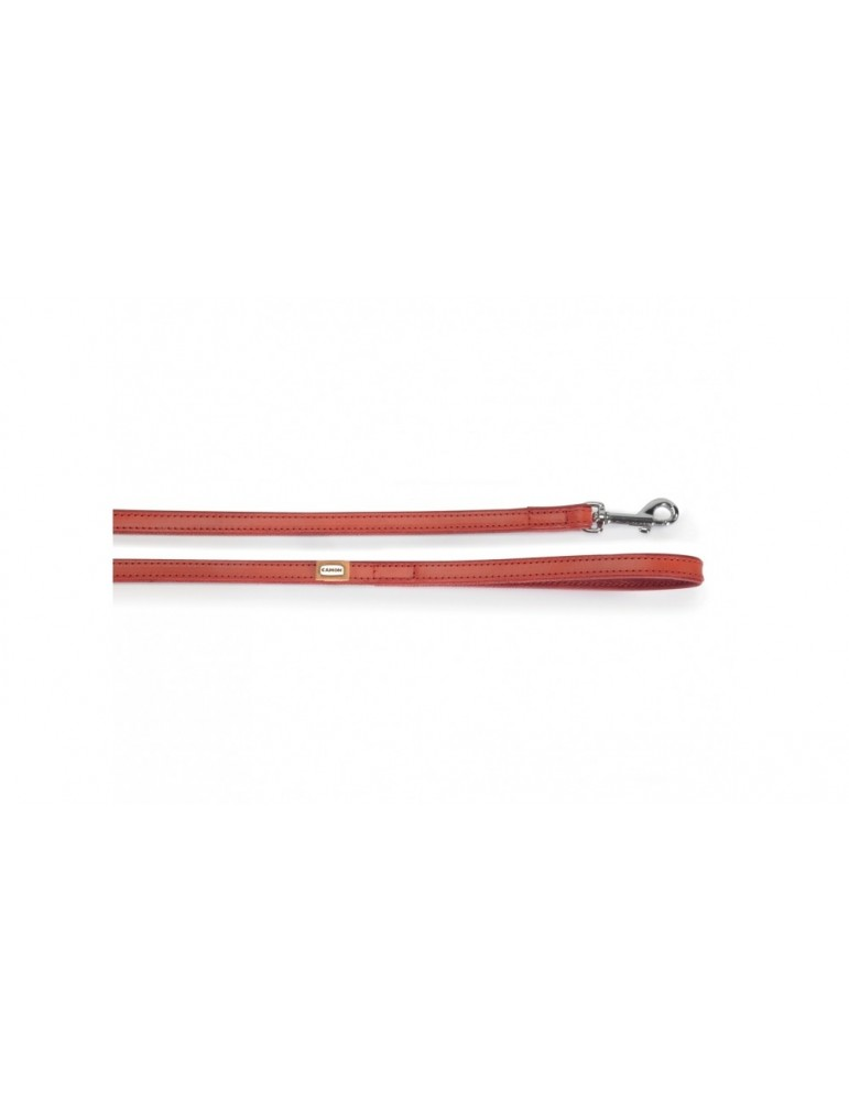 Leash In Synthetic Lining