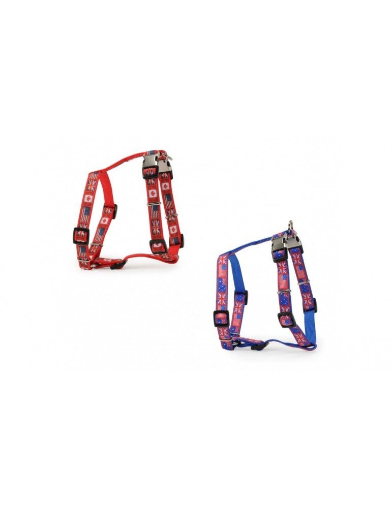 """""""Flags"""" Harness With Double Buckle"""