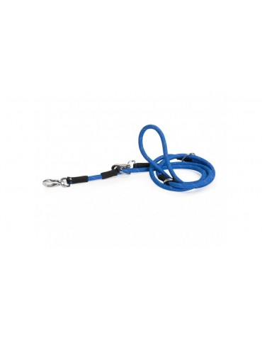 Training Leash For Dogs