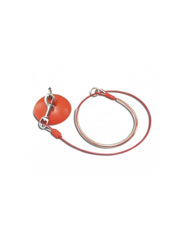 Professional Steel And PVC Leash