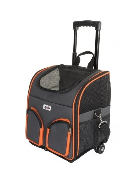 Pet carrier with two front pockets