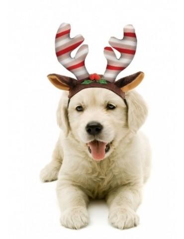 Χριστουγεννιάτικο καπέλο ταράνδου