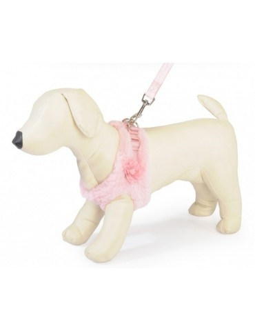 Breathable winter dog lead set Harness with leash