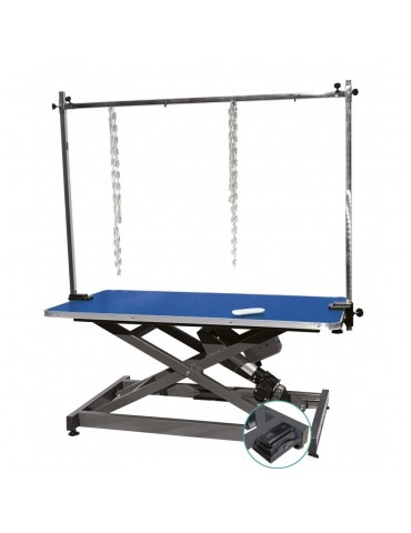 Electric Lifting Table